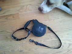 Put another collar around your retractable leash so that when needed, you can slip your arm through to use both hands. (For instance, when checking the mail). | 25 Brilliant Lifehacks That Every Dog Owner Should Know