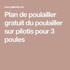 Plan de poulailler gratuit du poulailler sur pilotis pour 3 poules