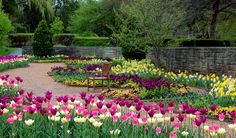 Springtime garden at Cantingy Gardens, Winfield Illinois.