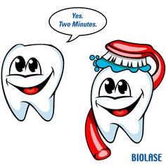 Teeth really need to last you your entire life, therefore it's crucial for you to look after them. Dental health is an easy matter to accomplish. Teeth Health, Healthy Teeth, Oral Health, Dental Health, Dental Humor, Dental Hygiene, Dental Pictures, Dental Art, Teeth Care