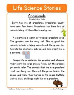 This Reading Comprehension Worksheet - Grasslands is for teaching reading comprehension. Use this reading comprehension story to teach reading comprehension. Informations About Reading Comprehension W Reading Comprehension Worksheets, Reading Fluency, Reading Passages, Reading Strategies, Science Worksheets, Science Lessons, Life Science, Science Projects, Science Experiments