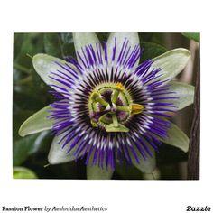 Passion Flower Puzzle