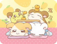 kotatsu :)