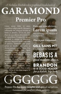 Garamond Premier Pro -- My favourite font. It is the perfect combination of class, elegance, history and practicality. #design #font #typeface #book #infographic #best #commercial #Garamond Made in the 1500s by Claude Garamond. RIP you classy man.
