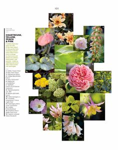 66 Square Feet: Wave Hill's plant combinations in Martha Stewart Living