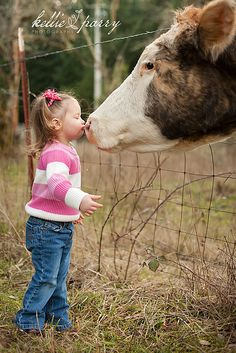 Kissing the big cow...