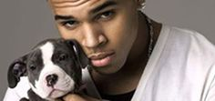 """""""He just wasn't a big enough asshole by abusing his girlfriend, so now he breeds a dog that is overbred, abused, and fought.  There are over a million animals put to sleep every year in the US every year, the largest majority pitbulls.""""/ amen to that!"""