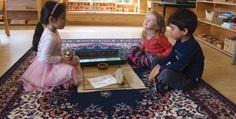 Little Earth Montessori - Responding from the heart