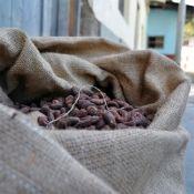 A big sac of cocoa beans!
