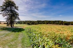 Estate in Maryland With Century Farmhouse to Be Auctioned This November - Mansion Global Hunting Stands, Crop Field, Indoor Basketball Court, Carroll County, Property Records, Maine House, Maryland, Acre, Countryside