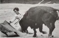 """""""Aprendí a torear a base de porrazos en las capeas y en los tentaderos"""" Base, Animals, Brazen Bull, Closed Doors, Animales, Animaux, Animal, Animais"""