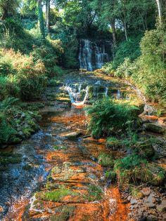 Blackmill Gardens at Kilsyth - Jason Stone