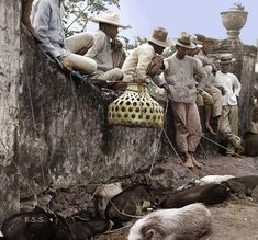 Black and white photos from Philippine history in colour Philippines Culture, Manila Philippines, Filipino Culture, Photo Colour, Color, Filipiniana, World Cultures, Vintage Pictures, Coconuts