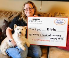 Elvis is had to get involved with i#dogthanking too! @purina #purinapartner.  Want to be feature on the Purina National Dog Show? Take a photo with your pup and a sign telling us why you are thankful for your dog. Make sure to use the hashtag #dogthanking and tag @Purina  For more info go to my blog (link above). I have an article with all the details!