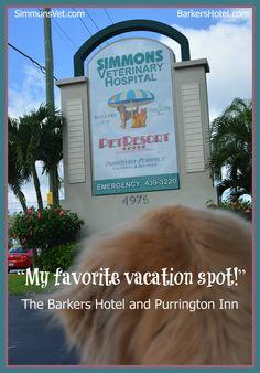 My favorite vacation spot.  www.simmonsvet.com