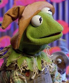 Kermit as the scarecrow in the muppets wizard of oz Funny Kermit Memes, Scarecrow Ideas, Sapo Meme, Young Movie, Fraggle Rock, Kermit The Frog, Alligators, Jim Henson, Partners In Crime