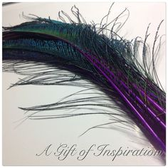 5 gorgeous 30-40cm long PURPLE SWORD peacock feathers for craft/millinery