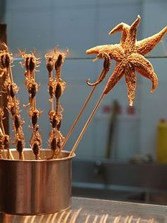Street food in China - Roasted Starfish, Seahorses and Scorpions