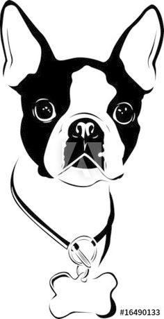 Boston Terrier Love, Boston Terriers, Brindle Boston Terrier, Terrier Breeds, Terrier Puppies, Bulldog Puppies, Boston Art, Cat Dog, Dog Tattoos