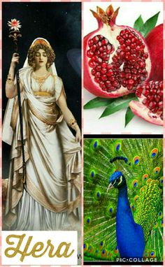 Hera was the queen of all the gods, she was also the goddess of marriage, women, and, of course, the sky. It only makes sense that the queen of the gods is married to the king of the gods, Zeus. Her symbols were the pomegranate and peacocks.