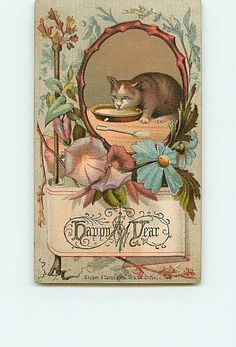 12668 Victorian New Year Greeting Card Cat Drinking Milk Saucer Spoon Very Early | eBay