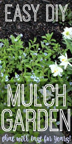 If you are thinking of putting in a new flowerbed, or even just want to make your current flowerbeds a little easier to maintain, I would highly recommend using tarp and mulch! We are going on year 6 or 7 now, and I have not a single complaint!