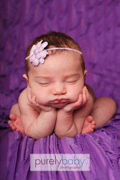Inspiration For New Born Baby Photography : Gallery  Purely Baby Photography  Maternity Newborn and Baby Photography