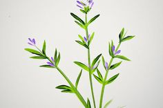 Painting lavender is as easy as it is pretty. Simple strokes added together make this painting come together in no time. How to paint lavender is a beginner tutorial that everyone will enjoy. Sinc…