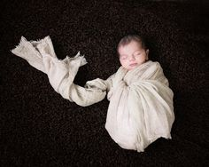 Newborn Photography Artistic Portrait Photography, Pet Portraits, Newborn Photography, Ballet Dance, Studios, Pets, Sweet, Candy, Dance Ballet