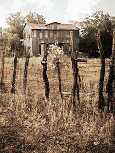 Floresville, Tx; Abandoned farmstead