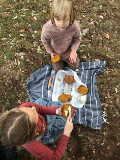 Delicious Autumnal Pumpkin Bread Perfect for Picnics and Halloween Parties or Thanksgiving too Babyccino Kids: Daily tips, Children's products, Craft ideas, Recipes & More