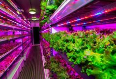 Technology Hits The Fields https://www.forbes.com/sites/mikemontgomery/2017/02/27/technology-hits-the-fields/?utm_campaign=crowdfire&utm_content=crowdfire&utm_medium=social&utm_source=pinterest #greenhouse #nature #organic #vegetarian