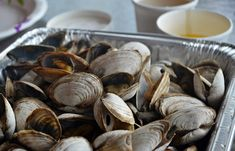 Steamed Clams | Classic New England Recipes