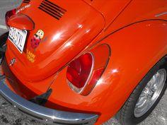 71Fran 1971 Volkswagen Beetle 33616530006_large
