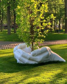 Kharkiv Ukraine. Talk To The Hand, Indoor Trees, Oahu, Belle Photo, Nature Photos, Mother Earth, Garden Art, Garden Sculpture, Dance Shoes
