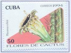 Sello: Pilocereus robinii (Cuba) (Cactus Flowers) Mi:CU 3769,Sn:CU 3591