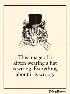 This image of a kitten wearing a hat is wrong. Everything about it is wrong. (Puritan Valentines Day Cards - College Humor)