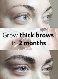 Grow Your Brows & Lashes Quickly
