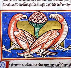 Bestiary, MS M.81 fol. 48v - Images from Medieval and Renaissance Manuscripts - The Morgan Library & Museum