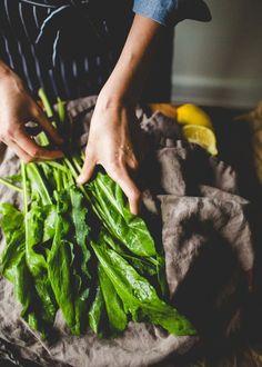 Sorrel Is the Lemon of the Vegetable World - Sorrel & Potato Gratin Sauteed Vegetables, Veggies, Perennial Vegetables, Growing Vegetables, Sorrel Recipe, Sorrel Soup, Fresh Lobster, Gratin Dish, Menu