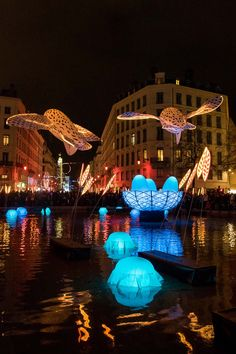 Discover recipes, home ideas, style inspiration and other ideas to try. Lyon France, Ville France, Guignol Lyon, Corsica, Shopping Mall Architecture, Lyon City, Spain Holidays, Festivals Around The World, Street Marketing