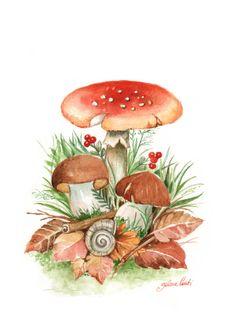 Mushrooms for Caffarel