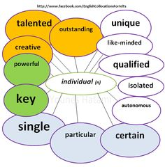 Collocations with the word 'individual'.