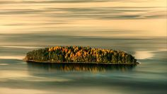 Autumn Island Koli National Park, Finland
