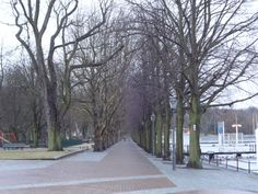 Alt-Tegel 19-2-2012 (1)
