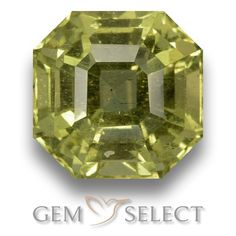 GemSelect features this natural untreated Apatite from Madagascar. This Green Apatite weighs 4ct and measures 8.9 x 8.8mm in size. More Asscher Cut Apatite is available on gemselect.com #birthstones #healing #jewelrystone #loosegemstones #buygems #gemstonelover #naturalgemstone #coloredgemstones #gemstones #gem #gems #gemselect #sale #shopping #gemshopping #naturalapatite #apatite #greenapatite #octagongem #octagongems #greengem #green