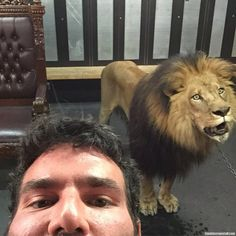 This is how you shoot a Lion #TheOnlyThingFakeInMyPicsAreTit | Dan Bilzerian: Instagram king and Poker player