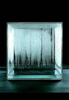 "Hans Haacke. ""Condensation Cube."" We talked about this in my museum exhibition class. This piece interacts with its environment, as more condensation would appear on the glass if the room is crowded, and less if the room is emptier."