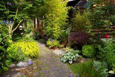 Jeanne's color-packed garden in Washington | Fine Gardening