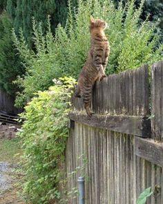 What's good in the neighborhood?